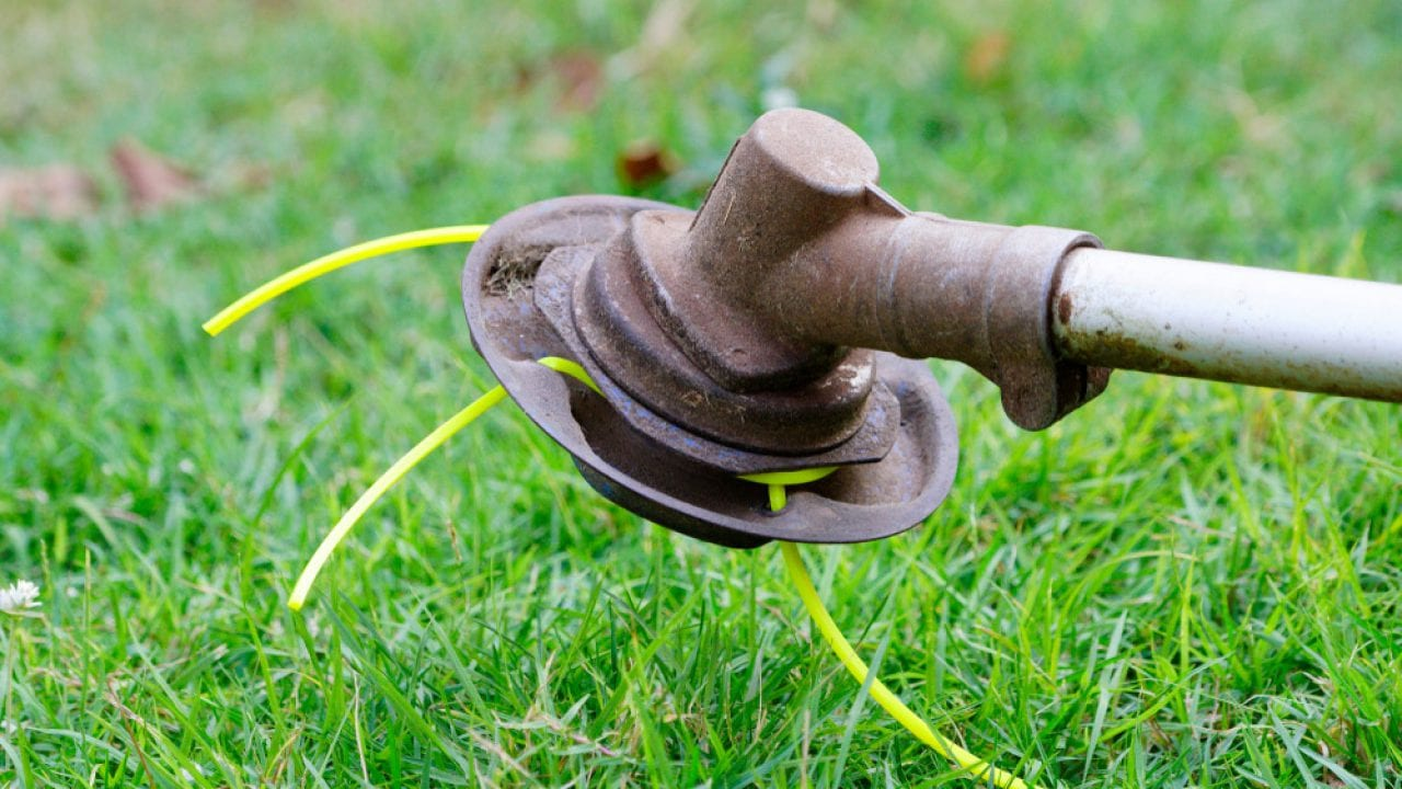 Best-String-Trimmer-Head-Reviewed